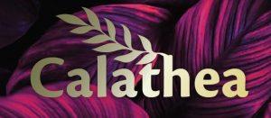 calathea logo